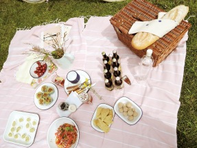 picnic - 3