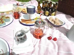 picnic - 6